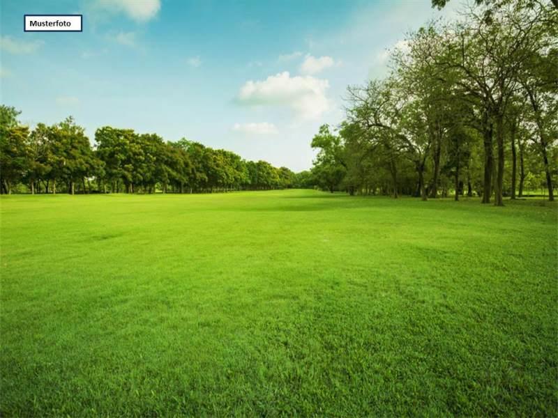 Zwangsversteigerung Grundstück Land und Forstwirtschaft in 04808 Lossatal, Dahlener Heide